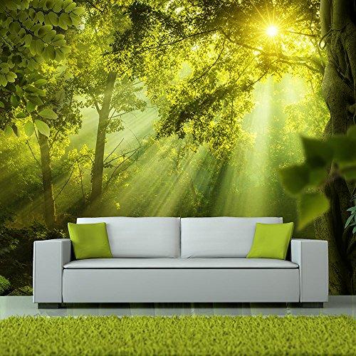 Fotomural de un bosque de luz un paisaje muy bello y for Donde conseguir vinilos decorativos
